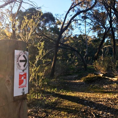 Heysen Trail Loop through Mount Crawford
