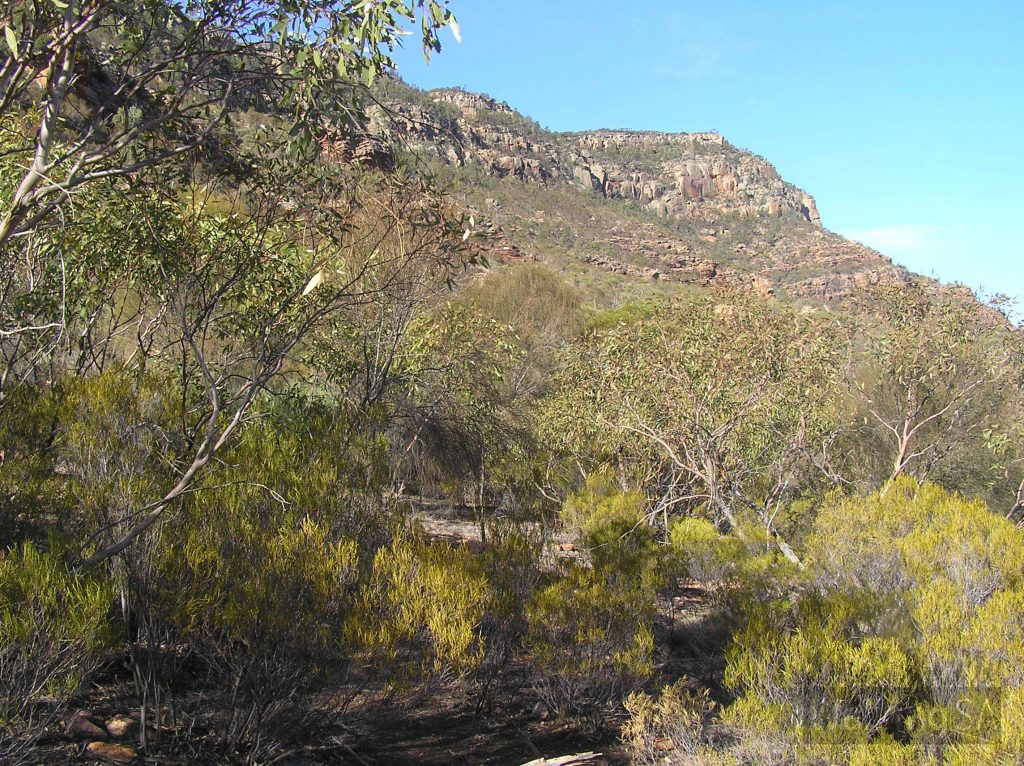 Hiking up to Rawnsley Bluff from the carpark