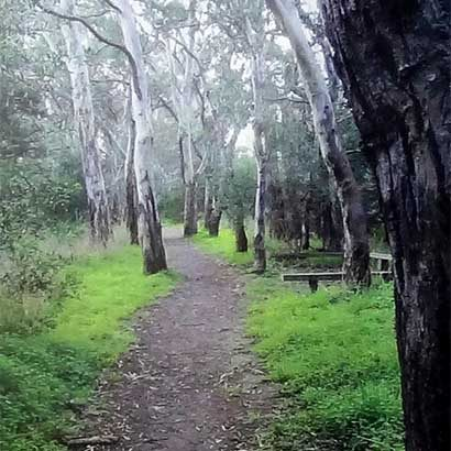 Hindmarsh River Walk