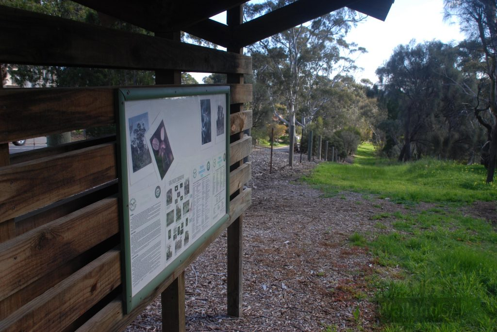 Information board at Angove Conservation Park