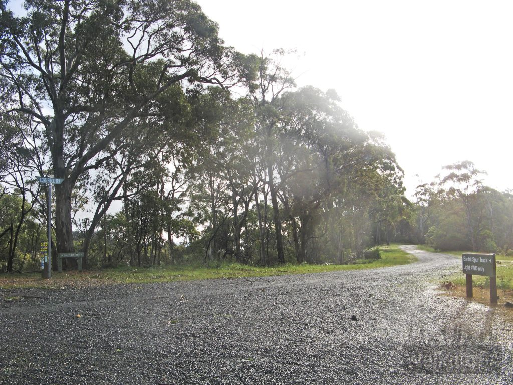 Junction of the Bartrill Spur Track and Long Ridge Track