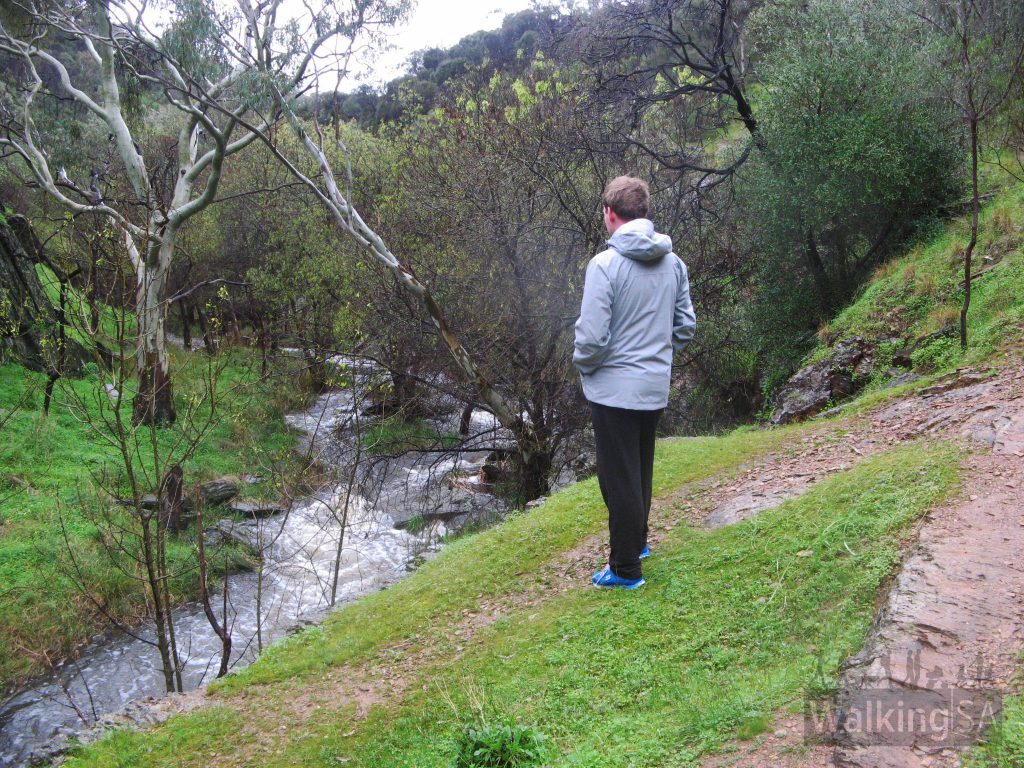 Looking over Sturt River, along the River Trail