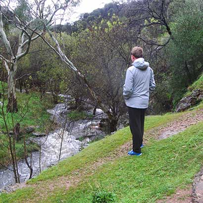 Sturt Gorge Loop along the River Trail