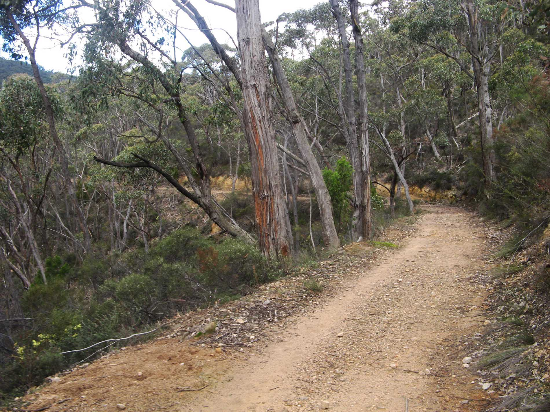measday hike through south cleland conservation park