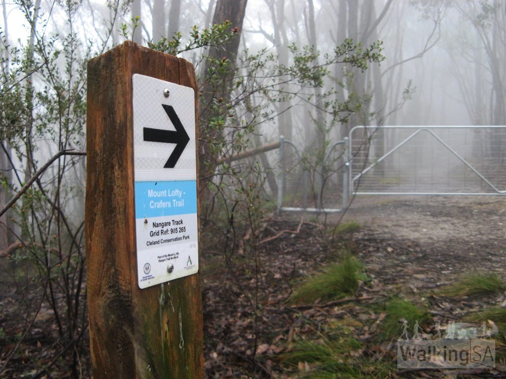 Mt Lofty to Crafers Trail, Nangare Track