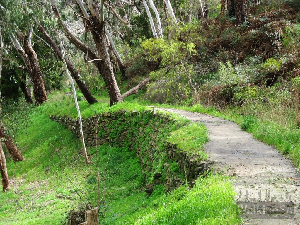 Old Bridgewater Mill water race path from Cox Creek, now the Heysen Trail