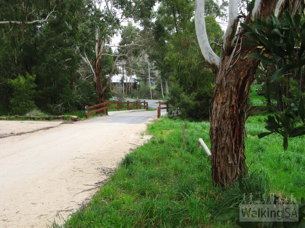 Original road to Melbourne bridge at Deanery Reserve
