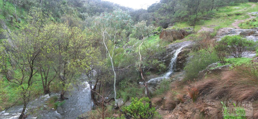 Sturt River, Sturt Gorge Recreation Park