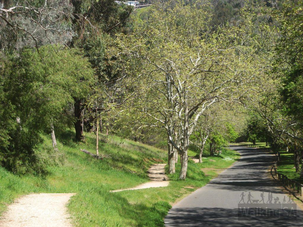 Brownhill Creek Road