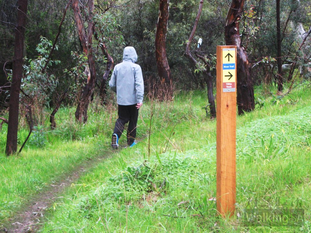 Signage on Sturt Gorge Trails, River Trail