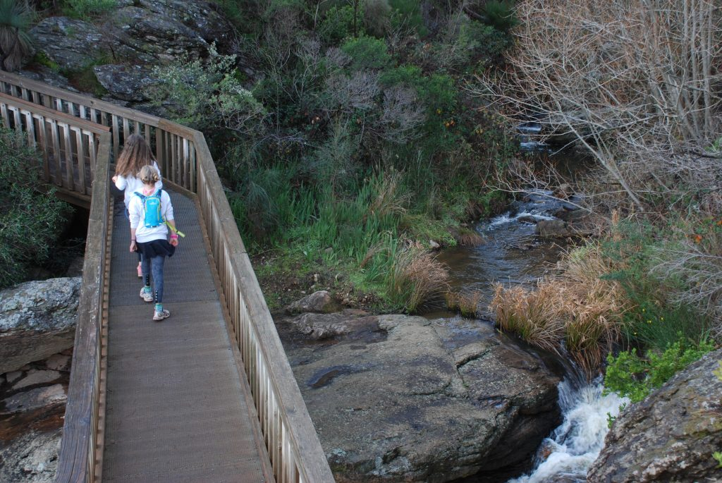 Survey on the Best walks of SA