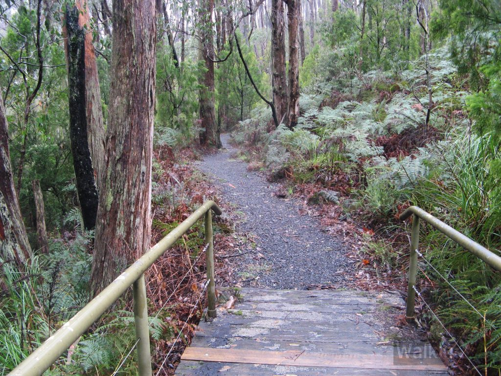 The BankSA Nature Trail, Mt Lofty Botanical Gardens