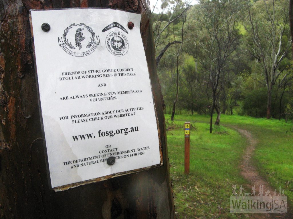 The Friends of Sturt Gorge maintain the park walking trails