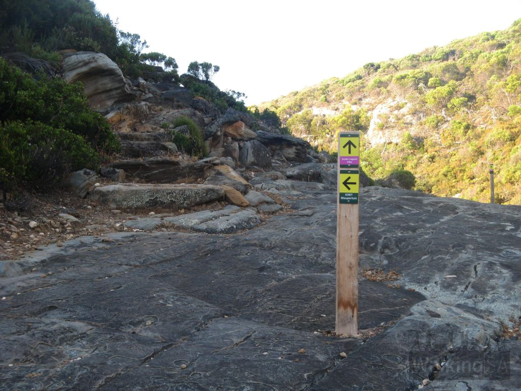 The Snake Lagoon Hike is well marked