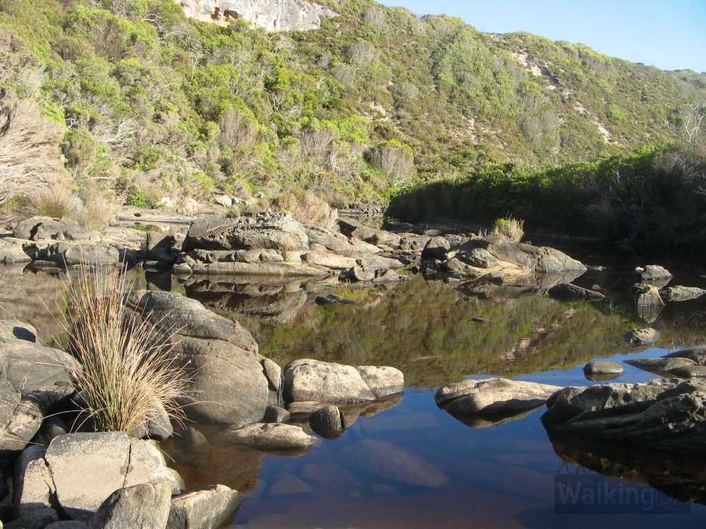 The Snake Lagoon Hike passes by quiet pools in Rocky River