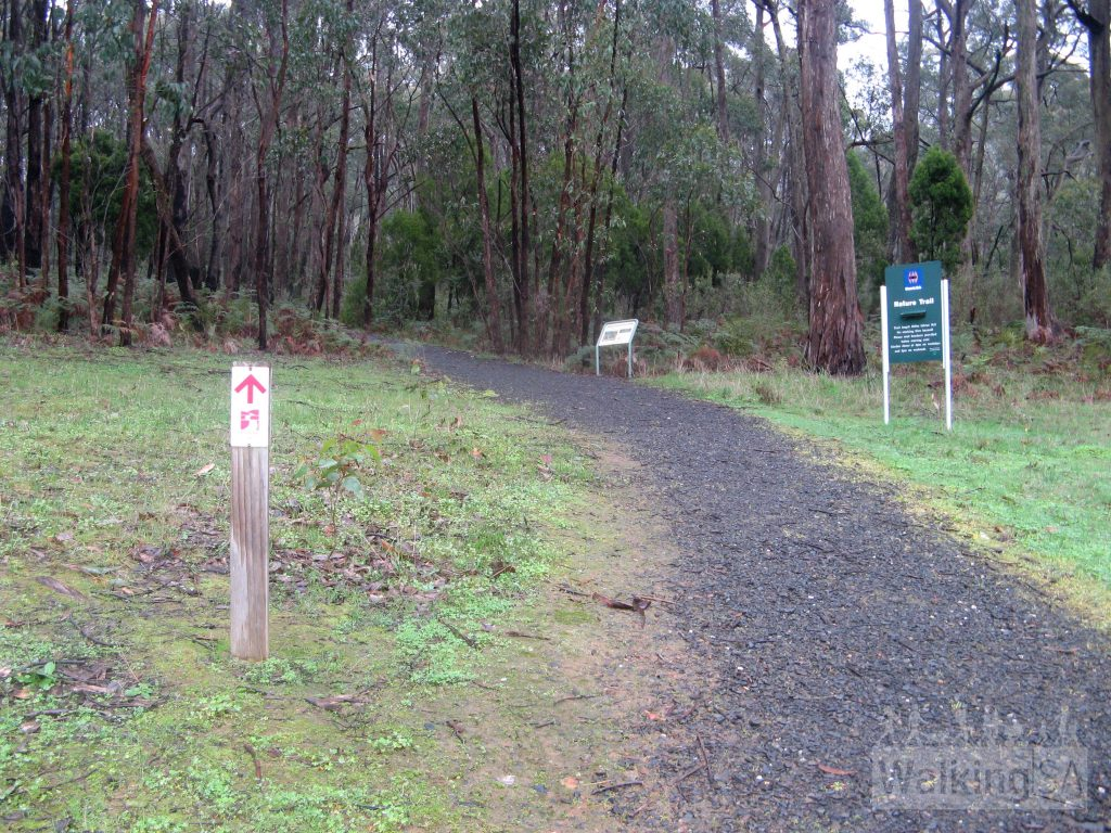 Start f the Nature Trail, which the Heysen Trail follows, through the Botanical Gardens