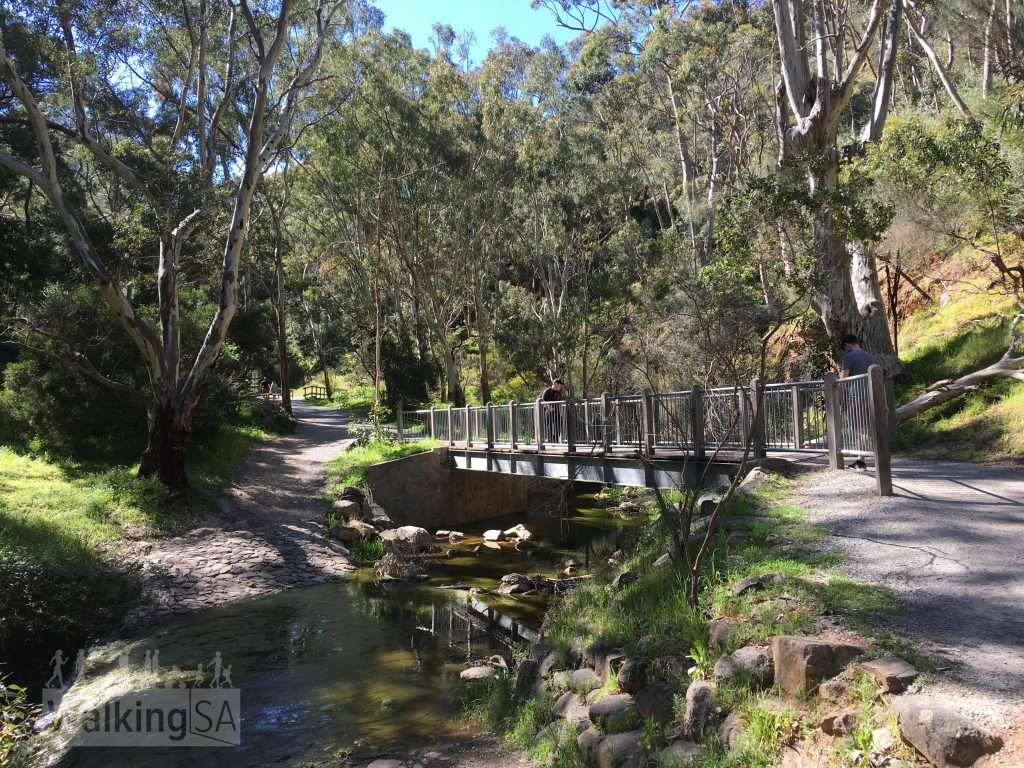 One of the bridges and adjacent fords on the Morialta Falls Valley Walk. There are bridges across each creek crossing point.