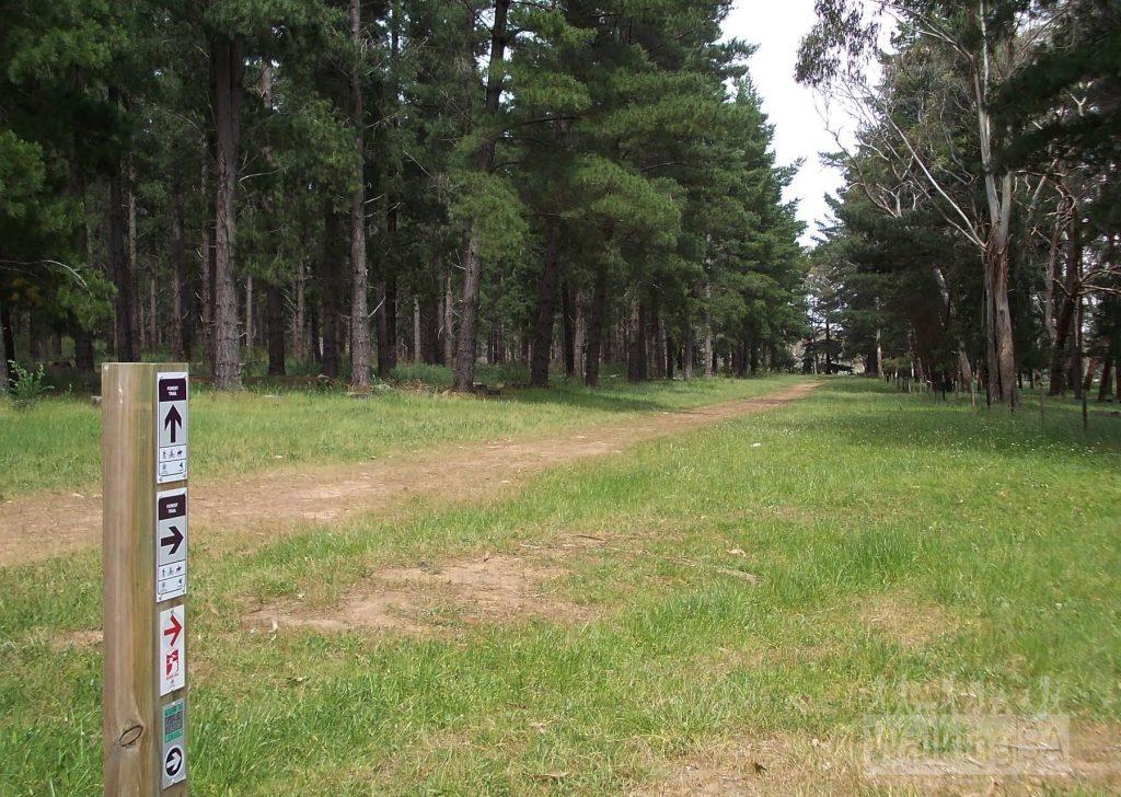 Tinjella Trail, Kuitpo Forest
