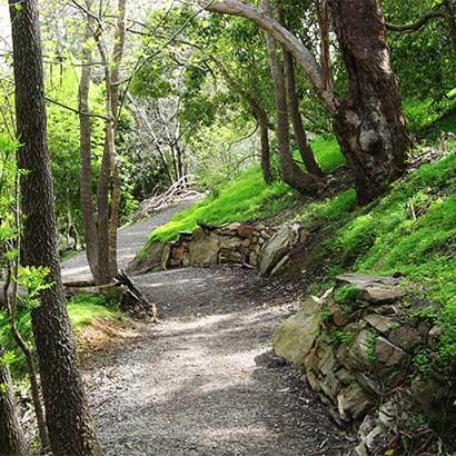 Valley Loop Hike, Belair National Park