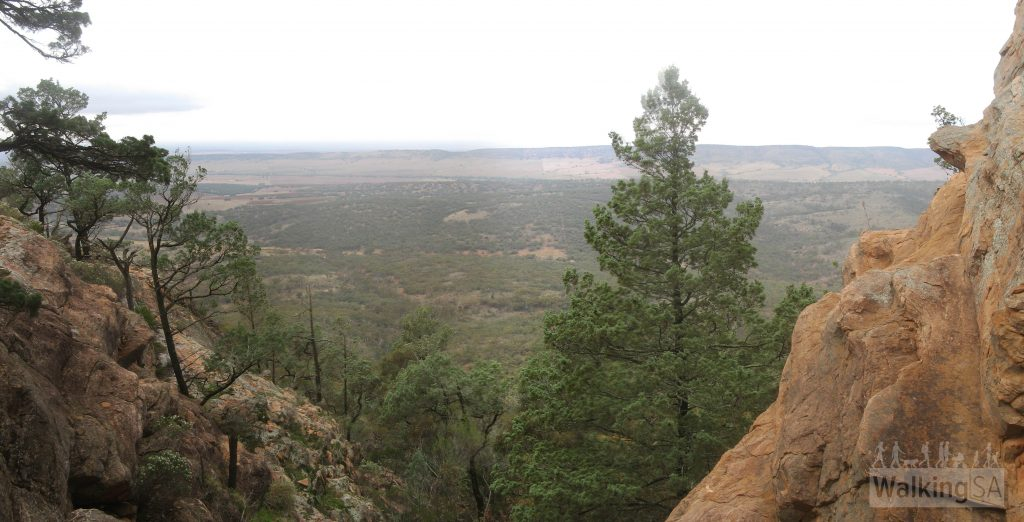 View on hike up along Devil's Peak Walking Trail