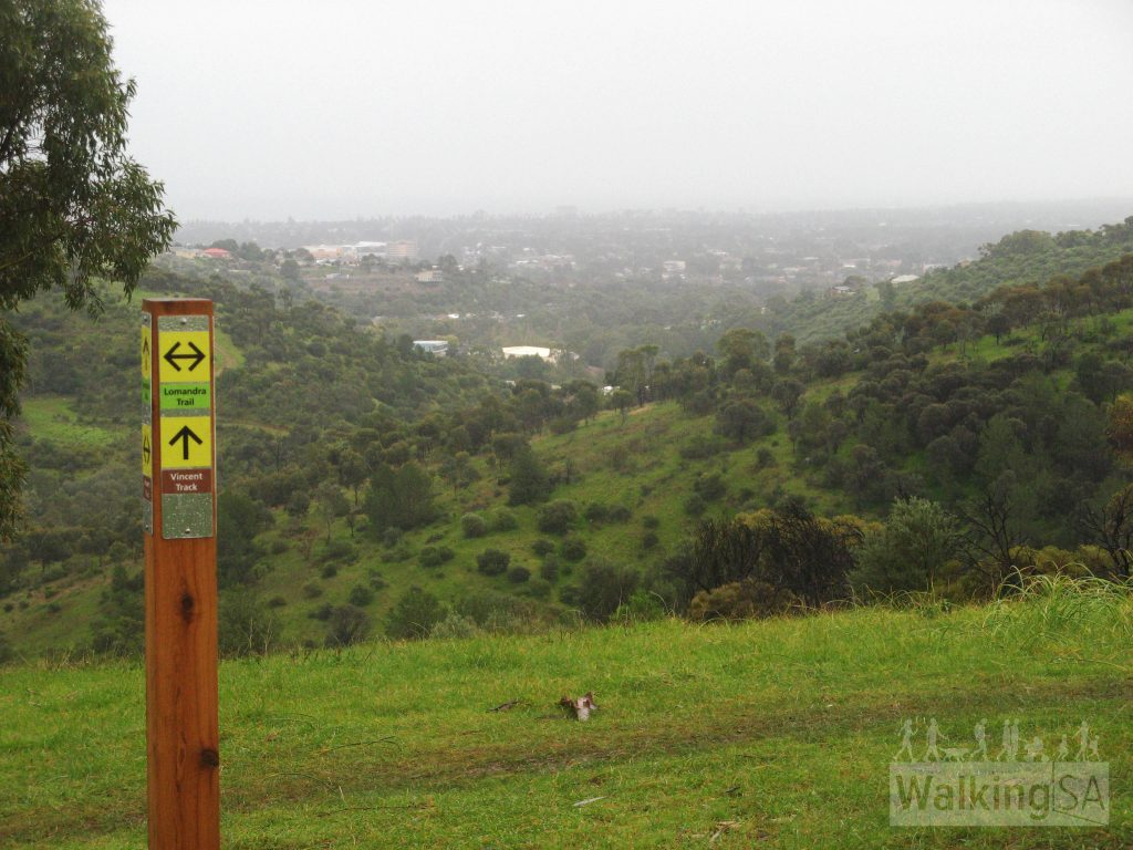 Views from Lomandra Trail on a raining day