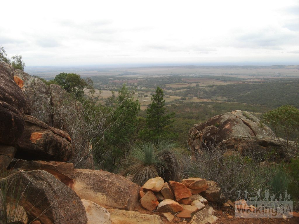 Views from the Devil's Peak Walking Trail