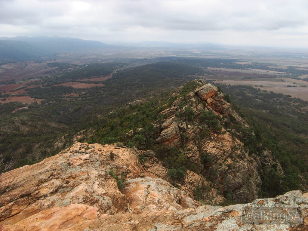 Devil's Peak Walking Trail