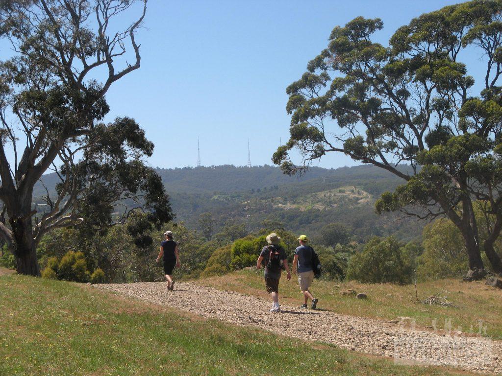 Walking the Yurrebilla Trail