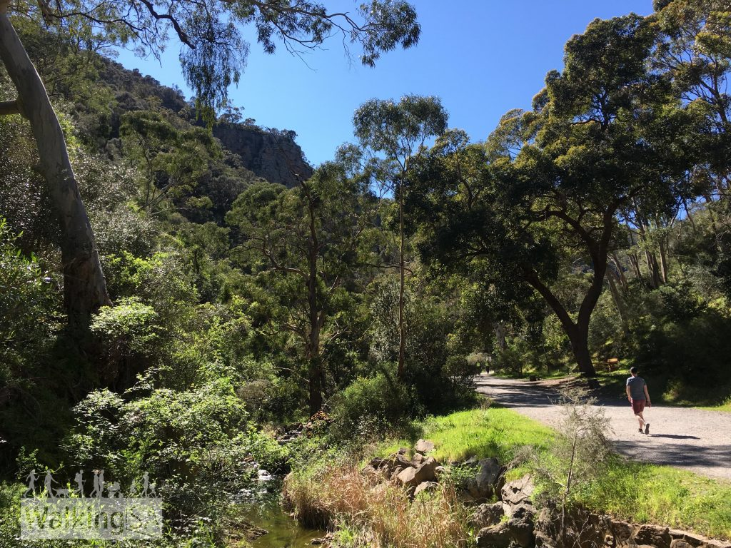 Walking on the Morialta Falls Valley Walk, which follows the narrowing gorge and Fourth Creek to the waterfall