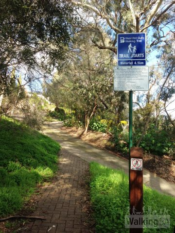 Walking trail above Waterfall Gully Road
