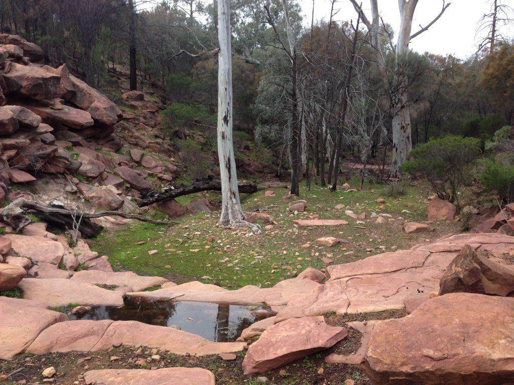 Arkaroo Rock Hike