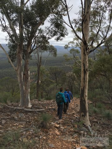 Walking down from the summit of Mt Cavern