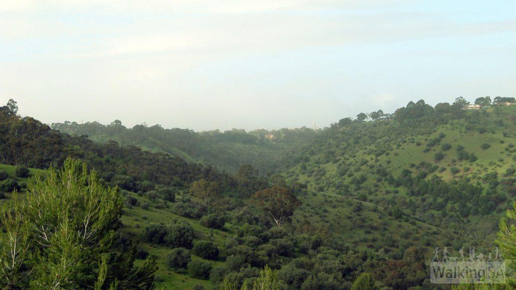 Sturt Gorge