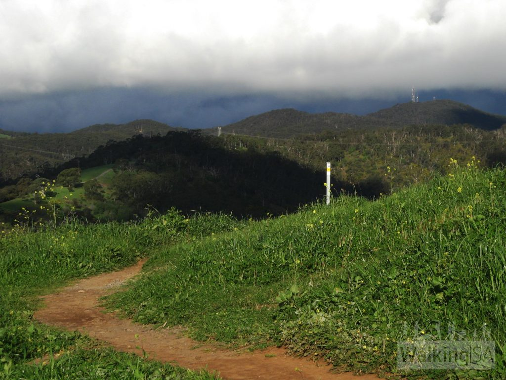 Views of Cleland Conservation Park and Mount Lofty