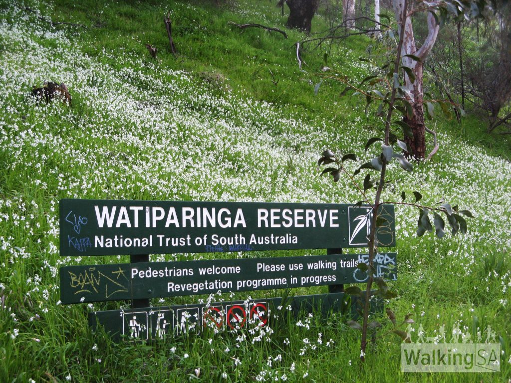 Entering Watiparinga Reserve