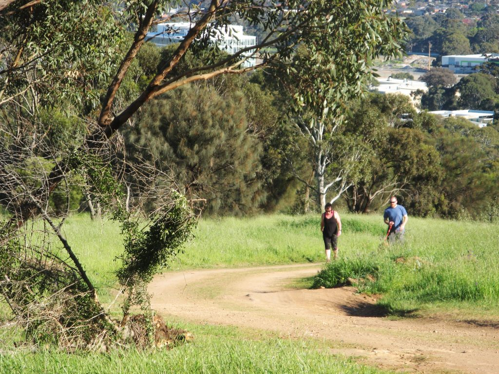 Seaview Loop, Shepherds Hill Recreation Park