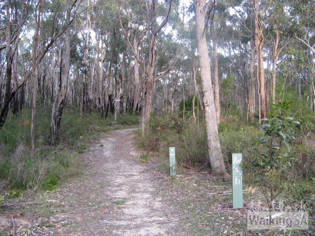 Walking on Loftia Track