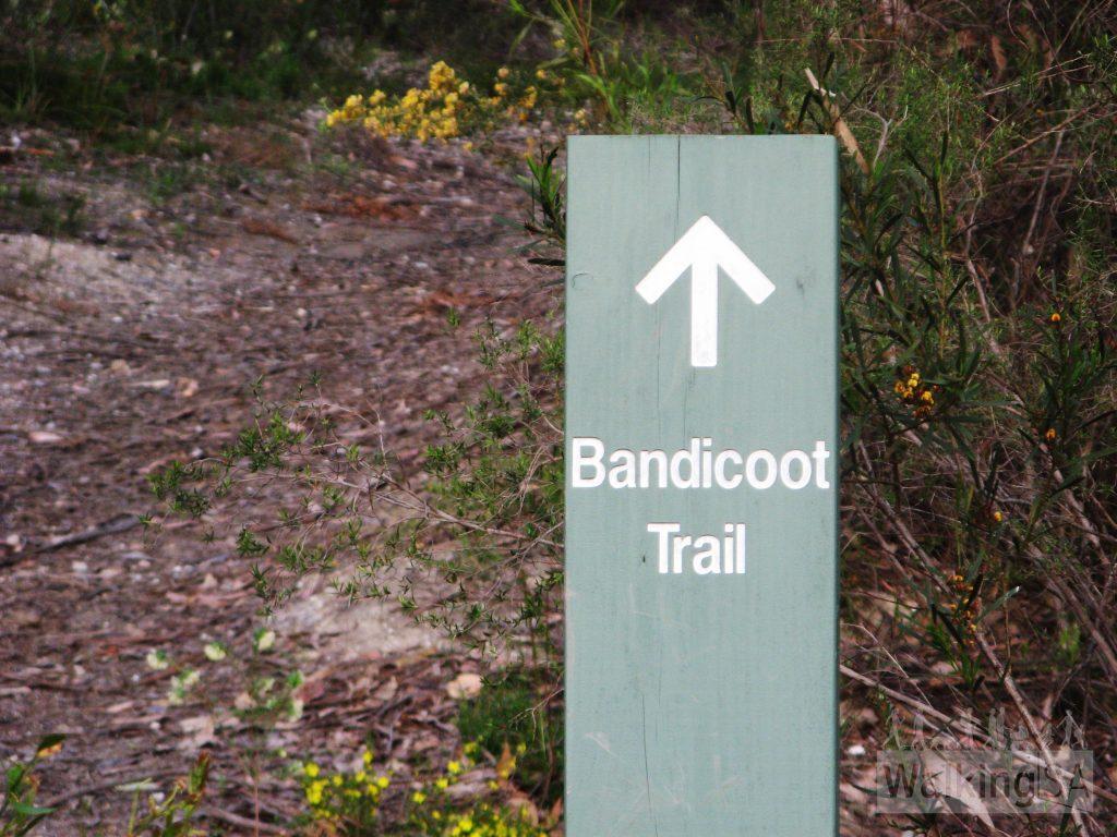 Bandicoot Trail signage