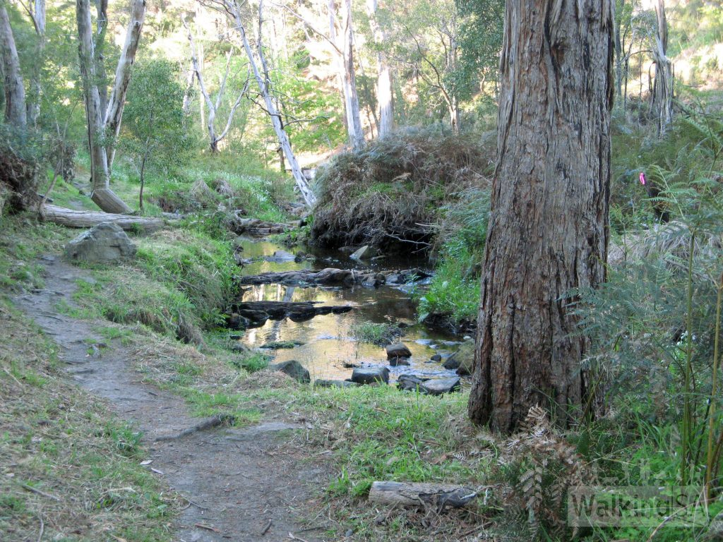 Aldgate Creek, Aldgate Valley Nature Walk