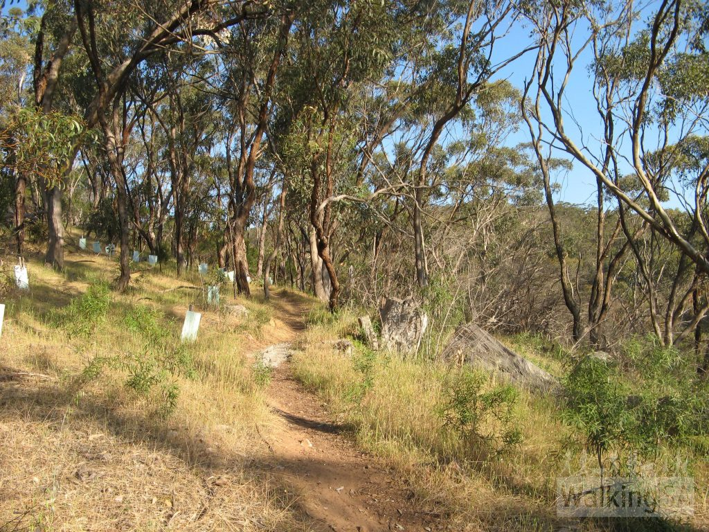 Sleeps Hill Walking Trail