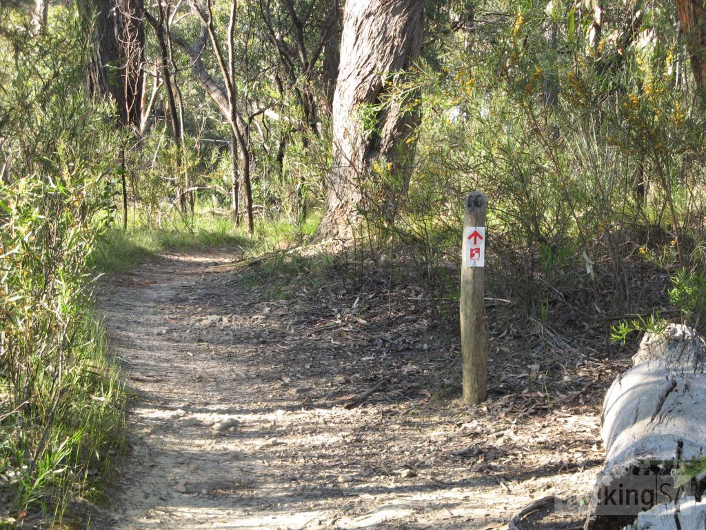 Heysen Trail following Aldgate to Mylor Road