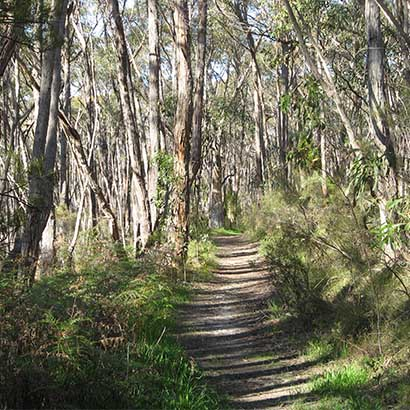 Mylor to Aldgate Loop along the Heysen Trail