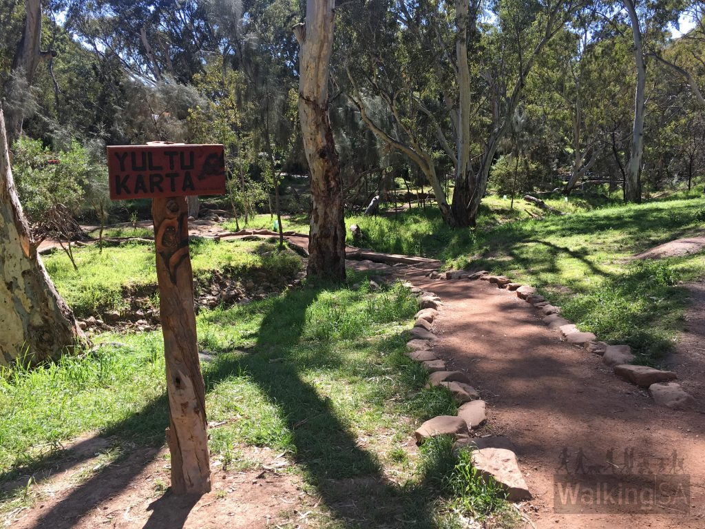 The Fourth Creek Walk passes the new Morialta Playground with its various play areas and trails