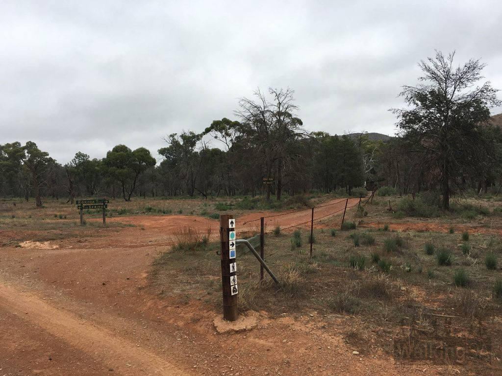 Trail markers and 4WD tracks at Rest Area near Sollys Well
