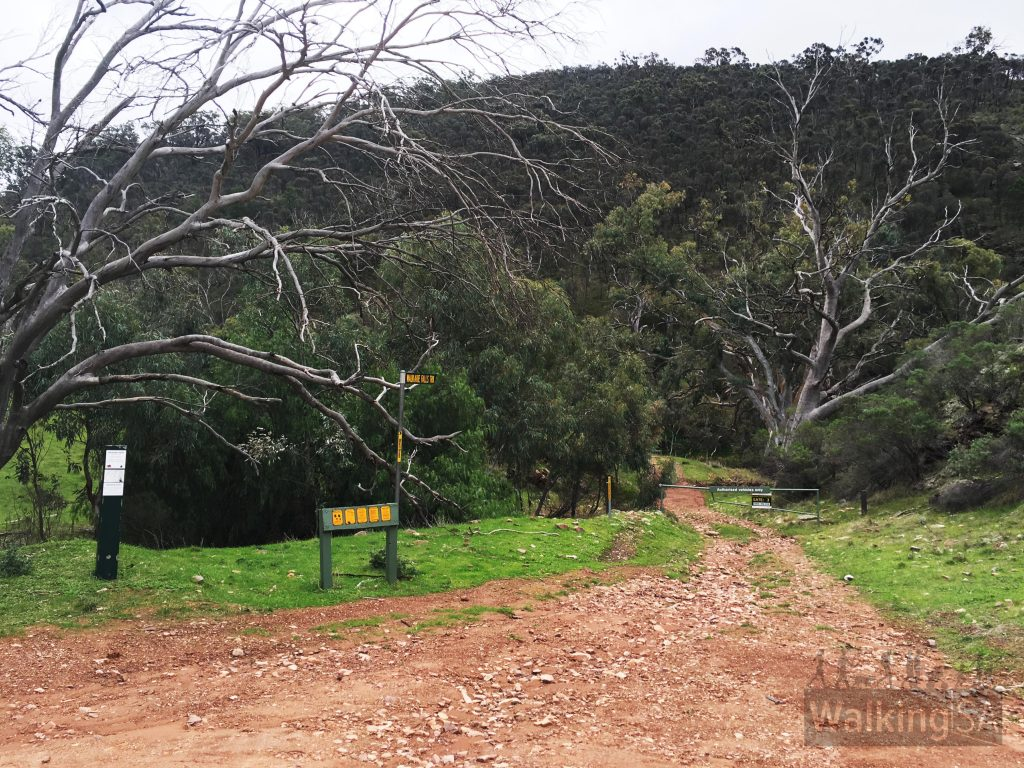 Trailhead and carpark at the end of Richman Valley Road
