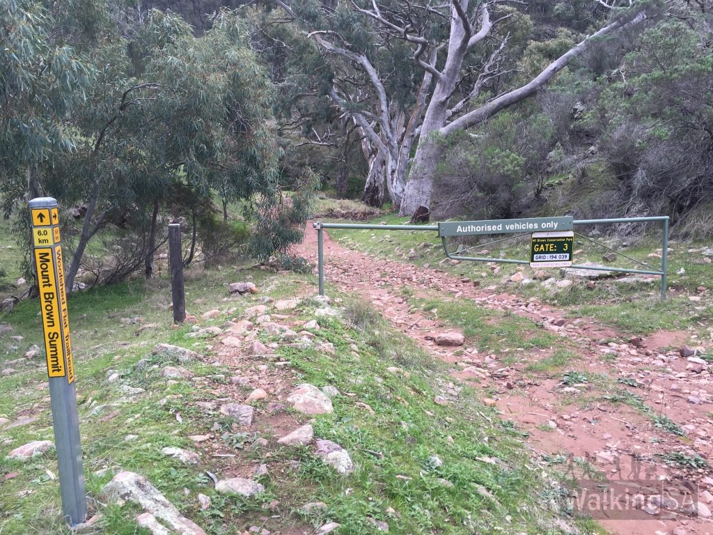 Trailhead and carpark at the end of Richman Valley Road. Gate 3 is here. On walking trail signage, this is referred to as the Olive Grove Trailhead (after the nearby home)