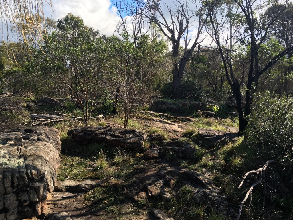 Walking up to Mt Barker Summit on the Scenic Bushwalk around the summit