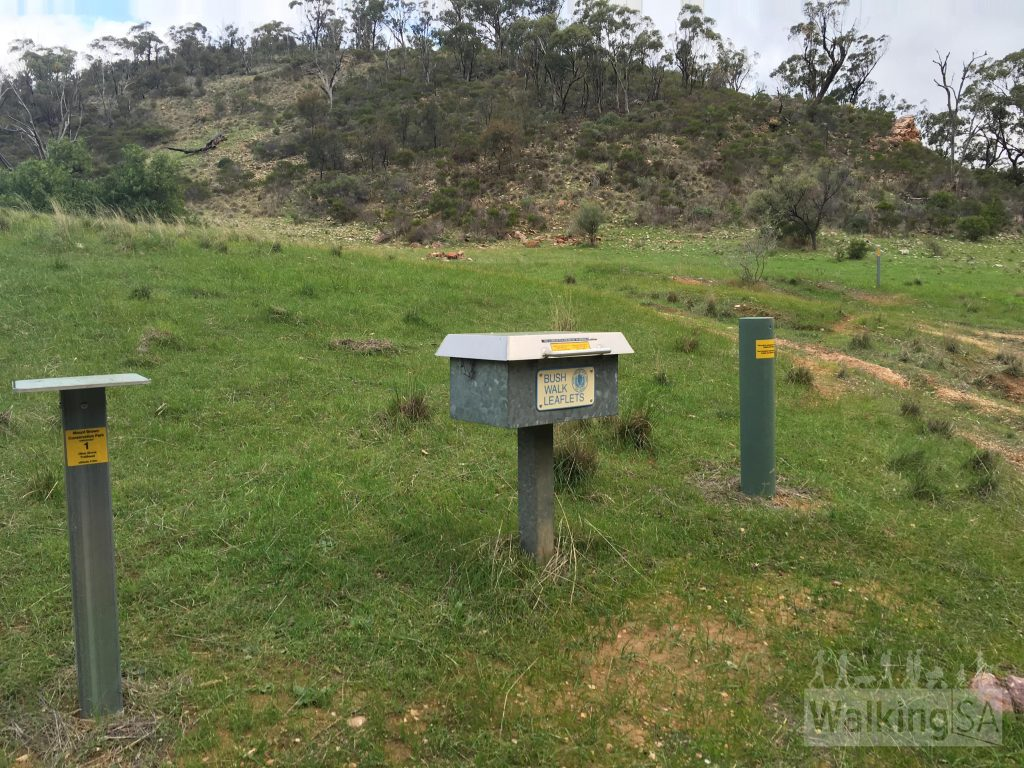 "The actual trailhead is 100m from the carpark, just past Waukarie Falls. This is Checkpoint 1. There are usually printed walk brochures in the metal box, thanks to <a href=""https://www.walkingtrailssupportgroup.org.au/flindersindex.htm"">Walking Trails Support Group</a>"