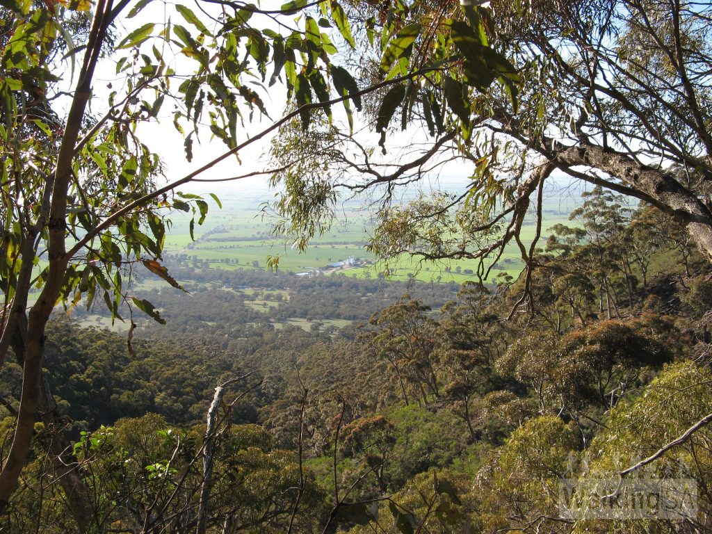 Views on the hike up to Mount Remarkable Summit