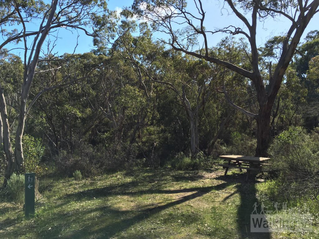 The picnic area near point 8